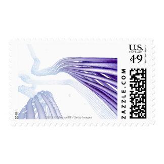 Stylised nerve fibers postage