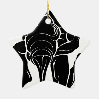 Stylised water bearer illustration Double-Sided star ceramic christmas ornament