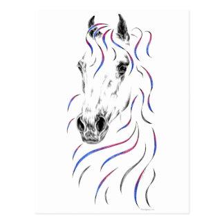 Stylish Arabian Horse Postcard