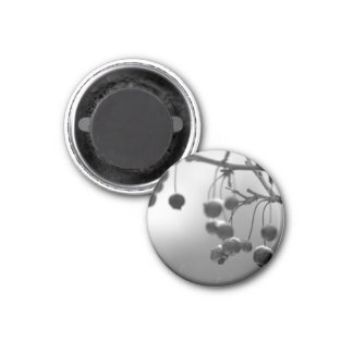 Stylish Black + White Christmas Berries 1 Inch Round Magnet