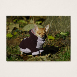 Stylish Dressed Chihuahua Puppy Business Card