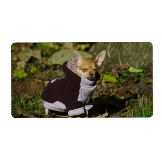 Stylish Dressed Chihuahua Puppy Label