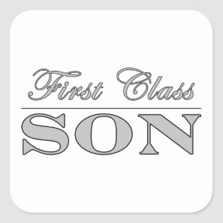 Stylish Fun Sons : First Class Son Stickers
