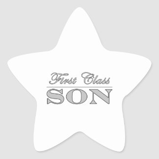 Stylish Fun Sons : First Class Son Star Stickers
