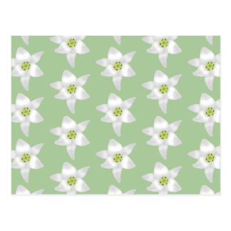 Stylish Green and White Lily Pattern. Postcard