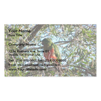 Stylish Green King Parrot With Orange Chest Sittin Double-Sided Standard Business Cards (Pack Of 100)