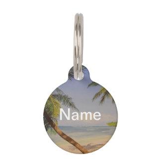 Stylish Palm Tree Pet Nametag