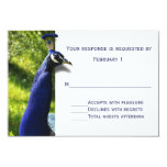 Stylish Peacock Wedding Response RSVP Card