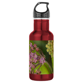 Stylish Wild Pink Milkweed with Green Leaves Water Bottle