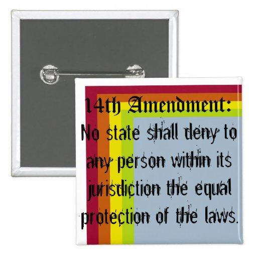 Stylized 14th Amendment Button