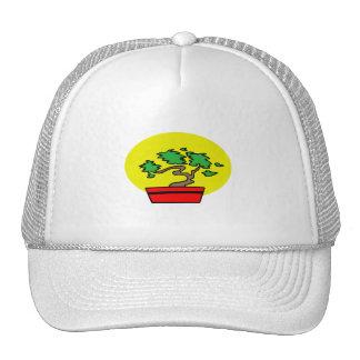 Stylized Bonsai Red Pot Yellow Sun Graphic Image Hats