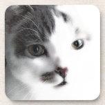Stylized Cat Face Close-up Coaster Set (6)