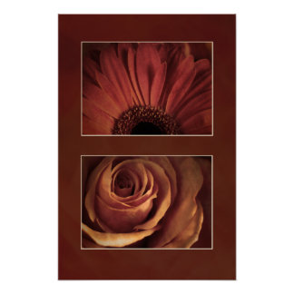 Stylized Daisy Rose Matboard Look Print