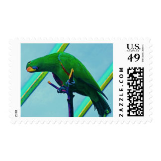 Stylized Green Parrot Stamp