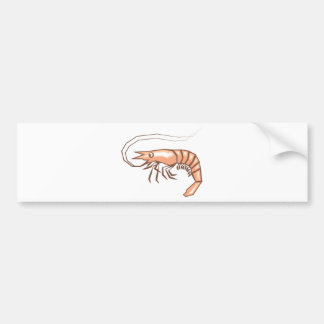 Stylized shrimp vector bumper sticker