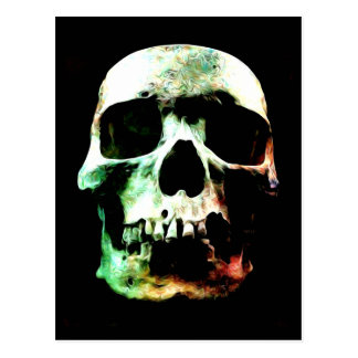 Stylized Skull Postcard