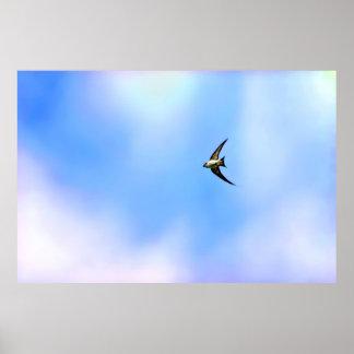 Stylized Swallow soaring Print