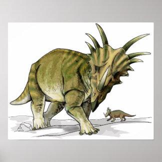 Styracosaurus - dinosaurio de Cretacous Posters