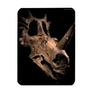 Styracosaurus Magnet