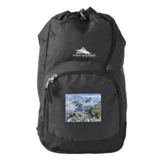 Styracosaurus near water- 3D render Backpack