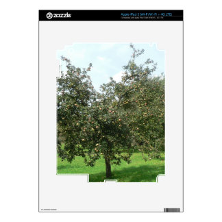 Styrian Apple Trees,Austria Decals For iPad 3