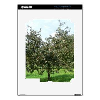 Styrian Apple Trees,Austria Skins For iPad 2