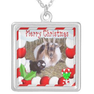SU collar del navidad de la foto de la cabra