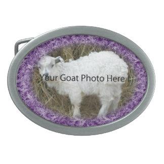 SU de la cabra de la foto hebilla del cinturón púr Hebilla De Cinturon Oval