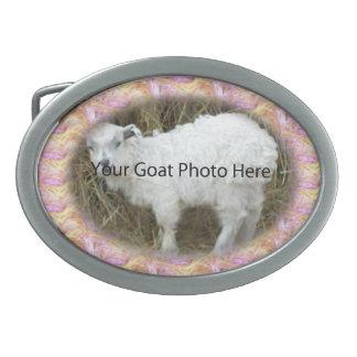 SU de la cabra de la foto hebilla del cinturón ros Hebilla De Cinturón Oval