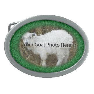 SU de la cabra de la foto hebilla del cinturón ver Hebilla Cinturon Oval