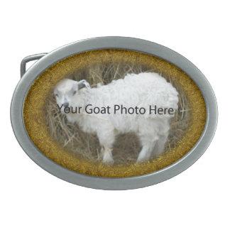 SU del oro del brillo de la cabra de la foto hebil Hebilla De Cinturón Oval