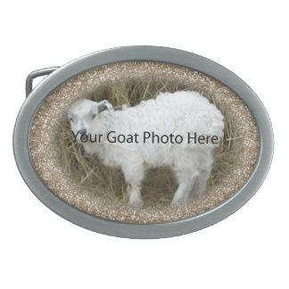 SU del oro del brillo de la cabra de la foto hebil Hebilla Cinturon Oval