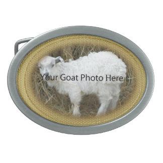 SU del oro del brillo de la cabra de la foto hebil Hebilla De Cinturon Oval
