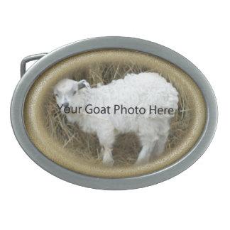 SU del oro del brillo de la cabra de la foto hebil Hebillas Cinturón