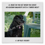 ¡Su foto aquí! Mezcla del Malamute de Alaska del m Poster
