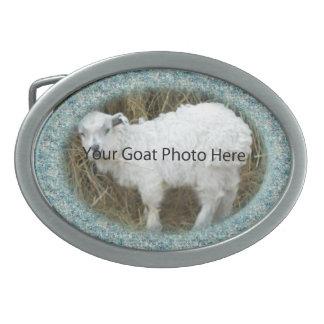SU foto de la cabra de la agua de mar aquí ceñe Bu Hebillas De Cinturon Ovales