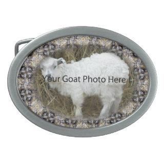 SU foto de la cabra del modelo de la plata del oro Hebillas Cinturon Ovales