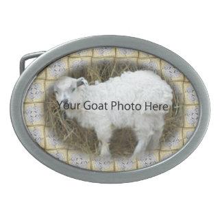 SU foto de la cabra del modelo de la plata del oro Hebillas De Cinturón Ovales