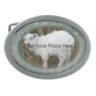 SU foto de la cabra del modelo del trullo aquí ceñ Hebilla De Cinturón Oval