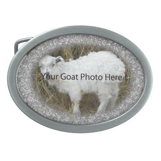 SU foto de plata de la cabra del brillo aquí ceñe Hebilla De Cinturon Oval