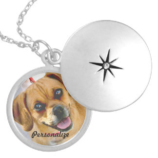 Su foto del mascota o collar conmemorativo cariños