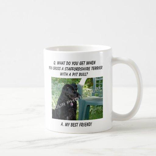 ¡Su foto! Mezcla de Staffordshire Terrier del mejo Taza