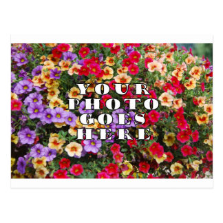 Su foto va plantilla aquí modificada para postal