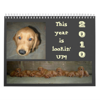 Su la vida de un perro calendario