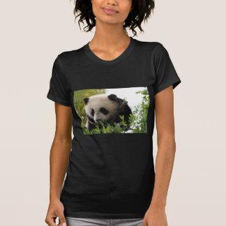 Su Lin, cachorro de oso de panda gigante en el par Playera