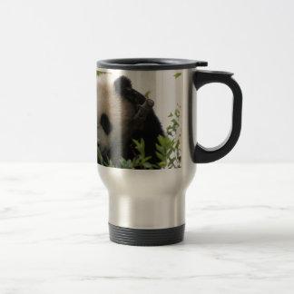 Su Lin cachorro de oso de panda gigante en el par Taza De Café