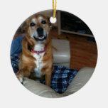 Su perrito en un ornamento adorno redondo de cerámica