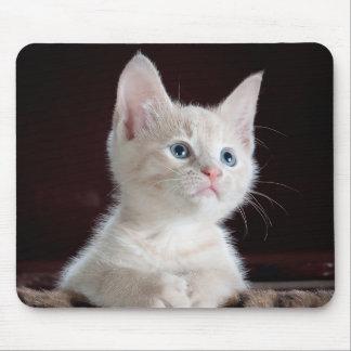 Su personalizado Mousepad de la foto