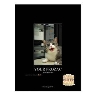 Su Prozac Tarjetas Postales