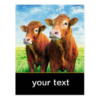 su texto aquí tarjeta postal